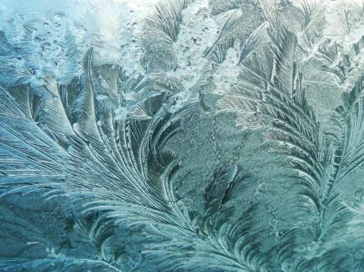ice-jan-1-2014-018